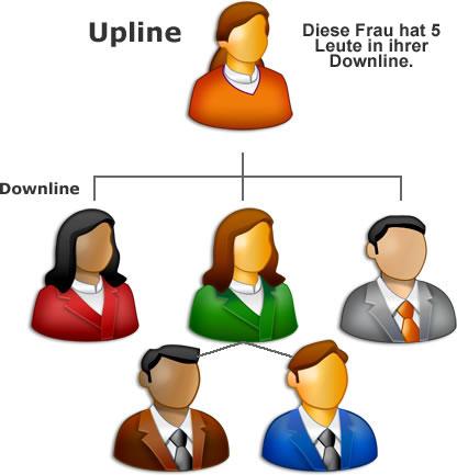 Upline